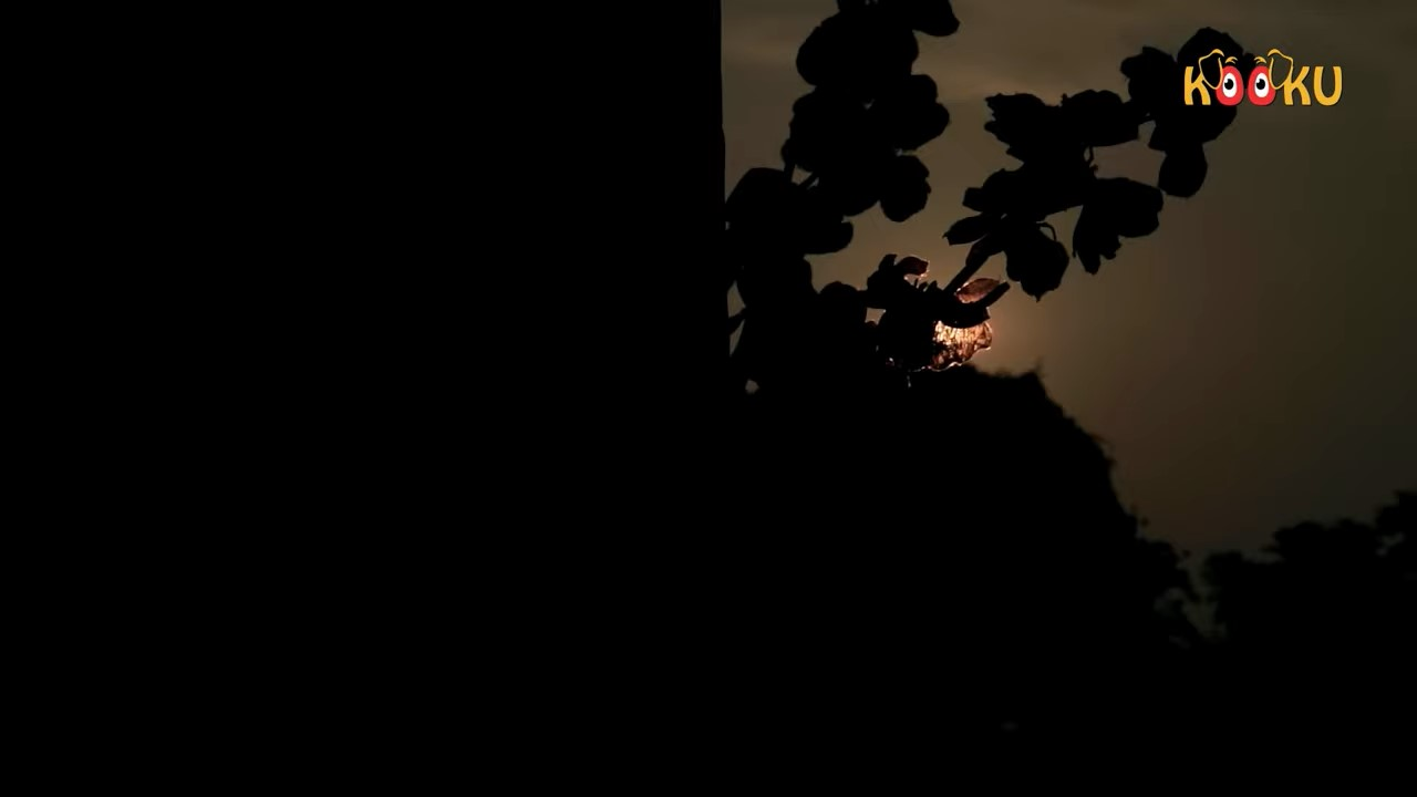 Bhootiyapa.mkv snapshot 00.40 [2020.06.02 11.30.13]