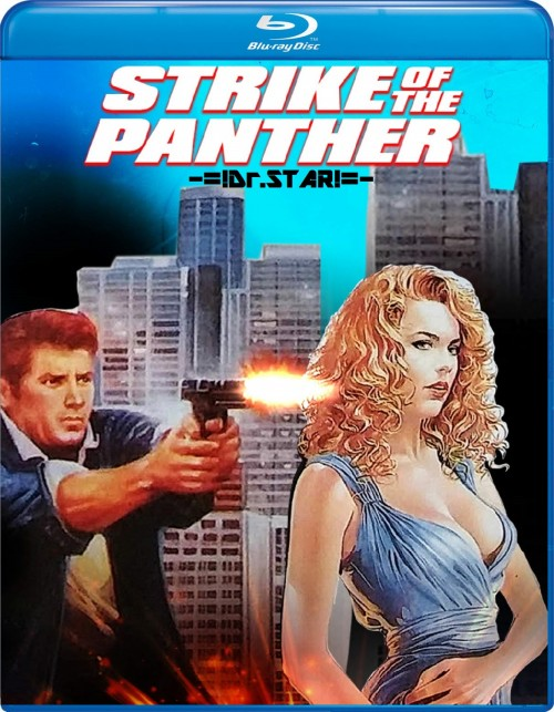 Strike of the Panther 1988 Hindi Dual Audio 300MB BluRay 480p