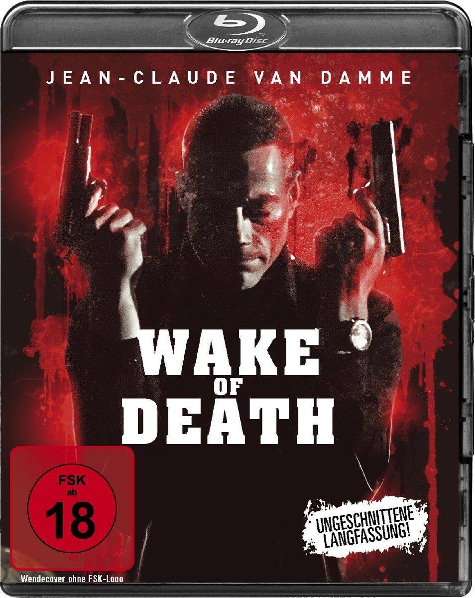 Wake of Death 2004 Hindi Dual Audio 720p BluRay 700MB ESub Download