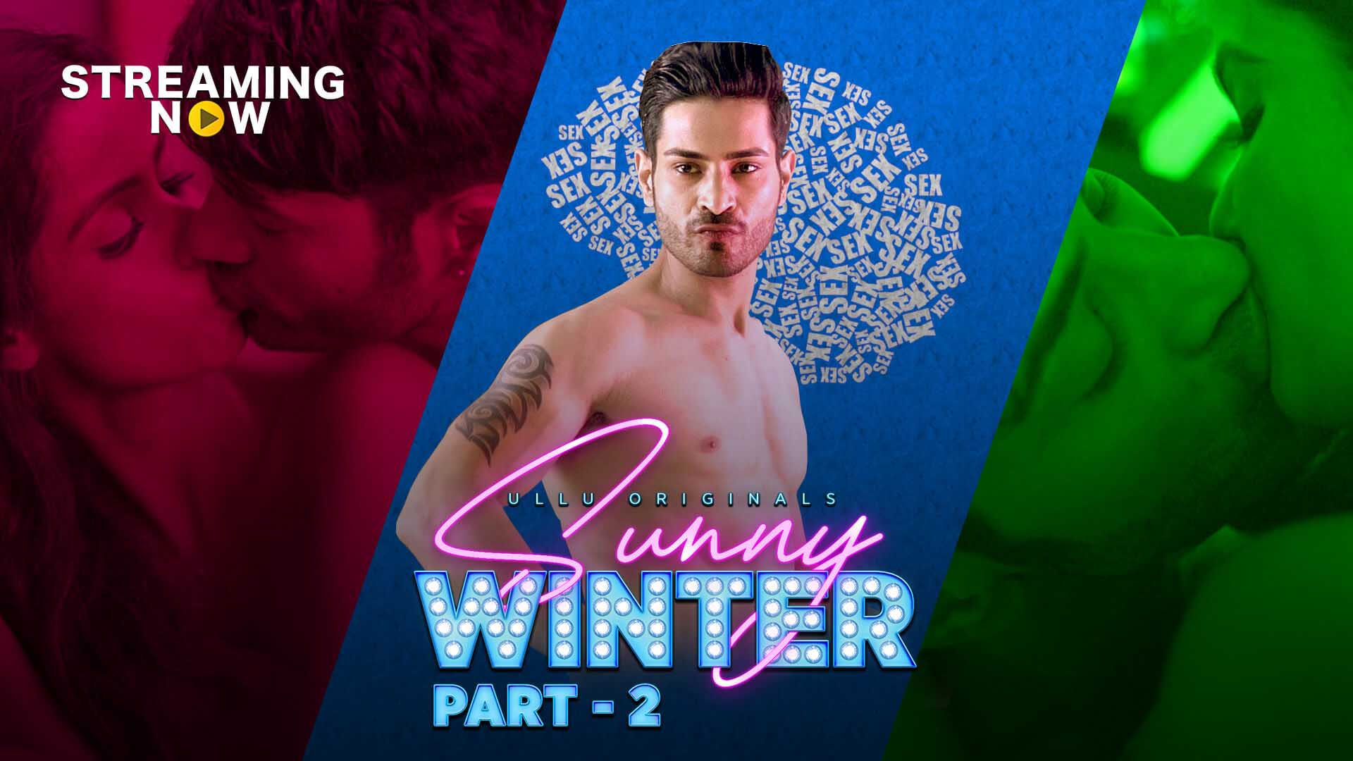 Sunny Winter Part:2 2020 S01 Hindi