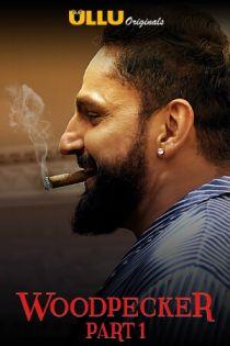 Woodpecker Part 1 2020 S01 Complete Hindi Ullu Web Series 300MB HDRip Download