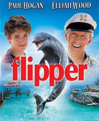 Flipper 1996 Hindi Dual Audio 340MB BluRay ESubs Download