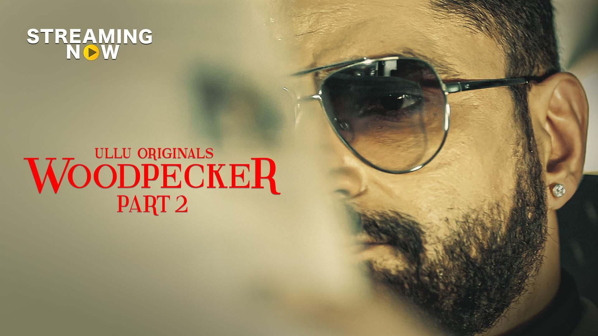 Woodpecker Part: 2 (2020) S01 Hindi Ullu Originals Complete Web Series 245MB HDRip Download