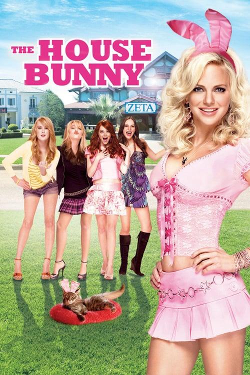 The House Bunny 2008 Dual Audio Hindi 350MB BluRay 480p ESubs Download