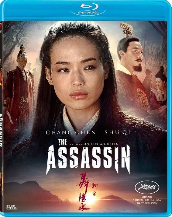 The Assassin 2015 Hindi Dual Audio 480p BluRay ESub 350MB x264 AAC