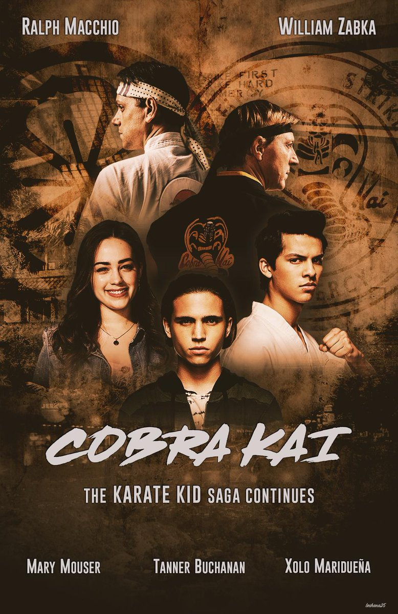Cobra Kai 2020 Hindi S01 Complete Netflix Web Series 1GB HDRip Download