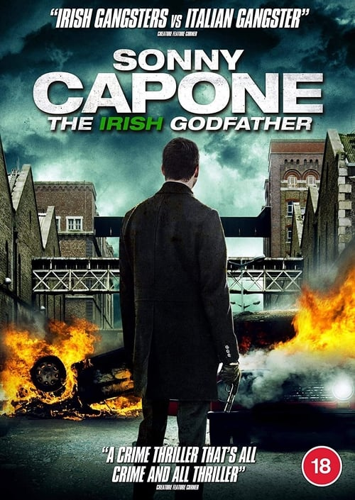 Sonny Capone 2020 English Movie 480p HDRip 300MB x264 AAC