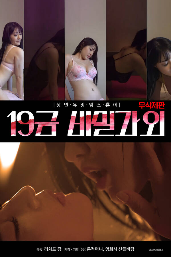 18+ 19 gold secret tutoring (2020) Korean Movie 720p HDRip 520MB Download