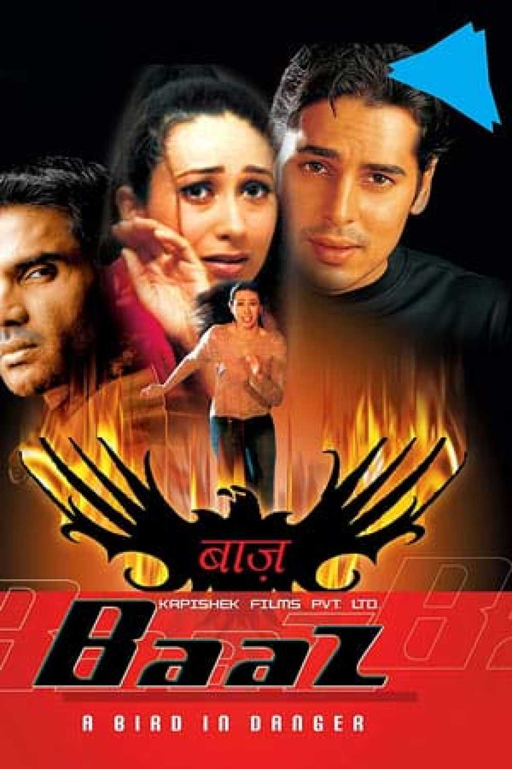 Baaz A Bird in Danger 2003 Hindi 500MB HDRip 480p ESubs Download