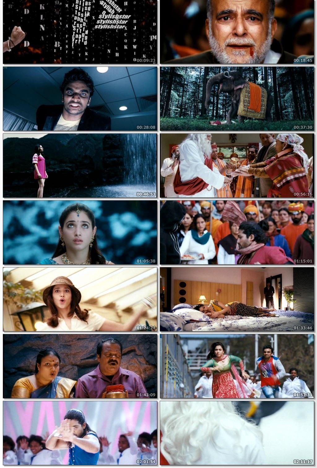 Badrinath 2011 Hindi Dual Audio UNCUT