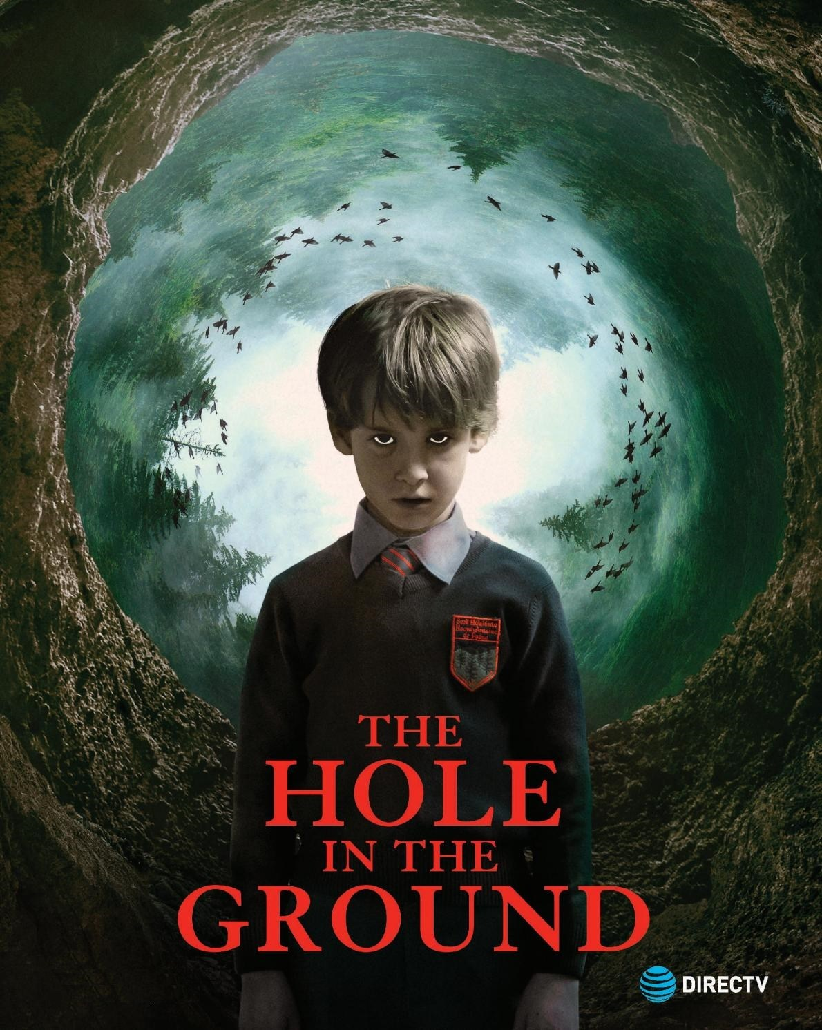 The Hole in the Ground 2019 Dual Audio Hindi ORG 350MB BluRay ESub Download