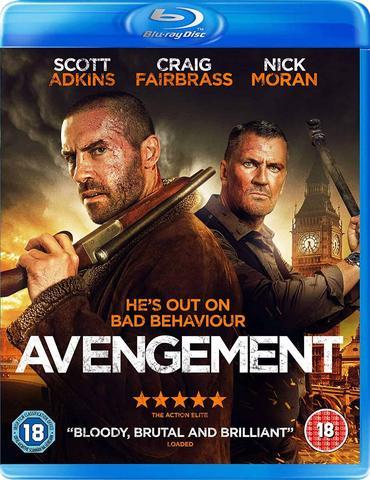 Avengement (2019) UNCUT Dual Audio Hindi ORG 720p BluRay 850MB Download