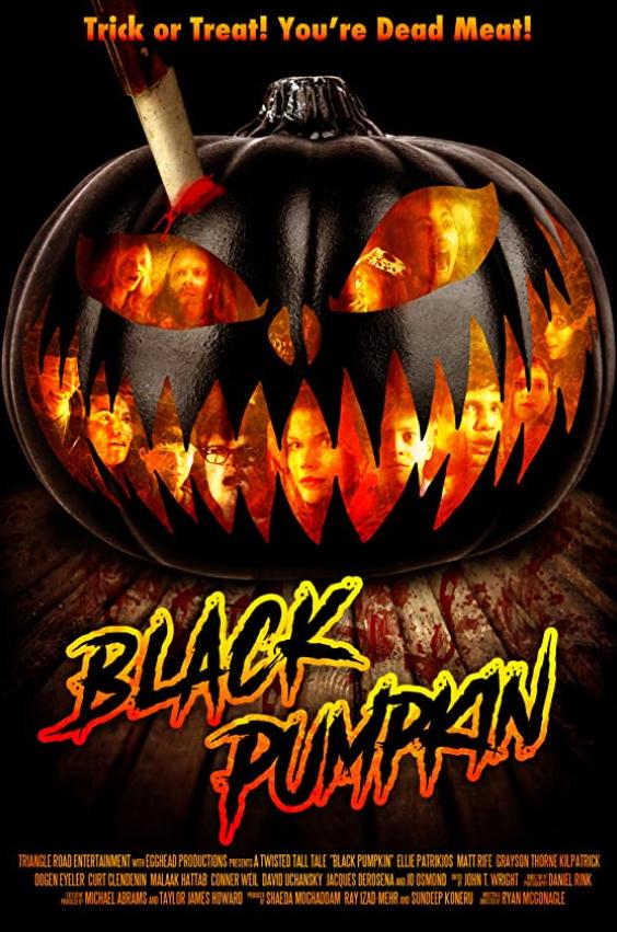 Black Pumpkin 2020 English 300MB HDRip Download