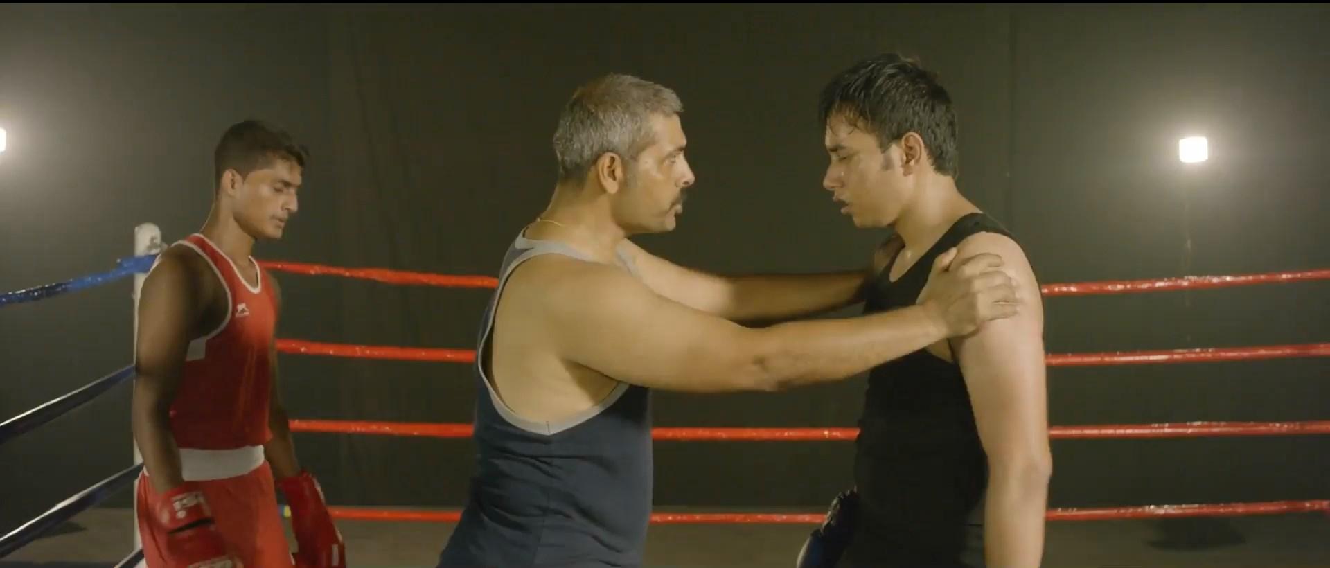 Boxer (11)