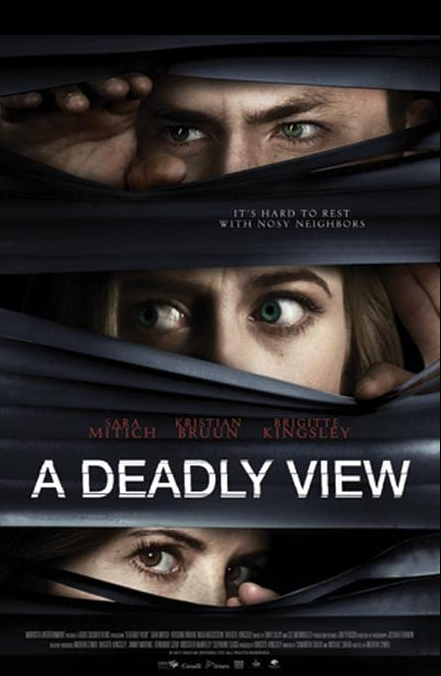 A Deadly View 2020 English 720p HDRip ESub 850MB Download