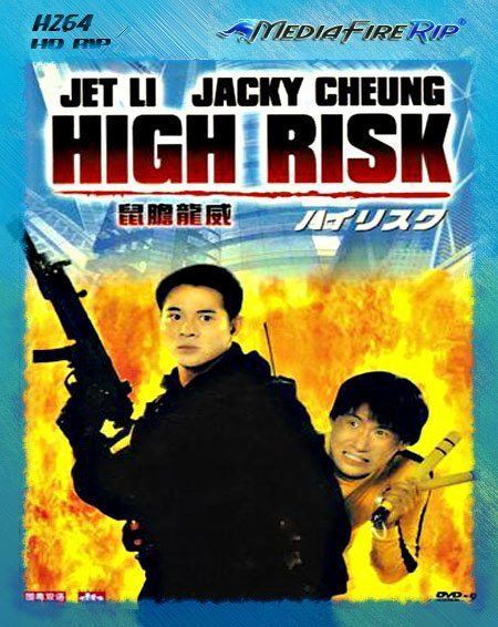 High Risk 1995 Dual Audio Hindi 720p HDRip ESub 1.2GB Download