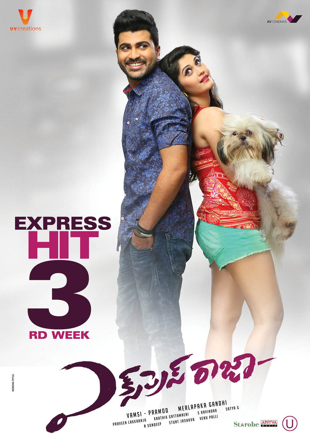 Express Raja (2021) Hindi Dual Audio UNCUT BluRay 600MB Download