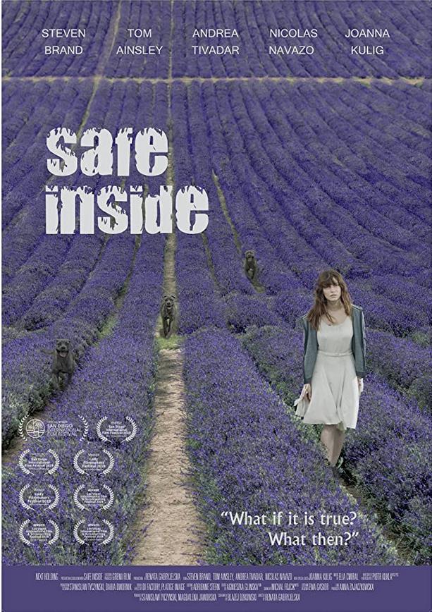 Safe Inside 2020 English 310MB HDRip Download