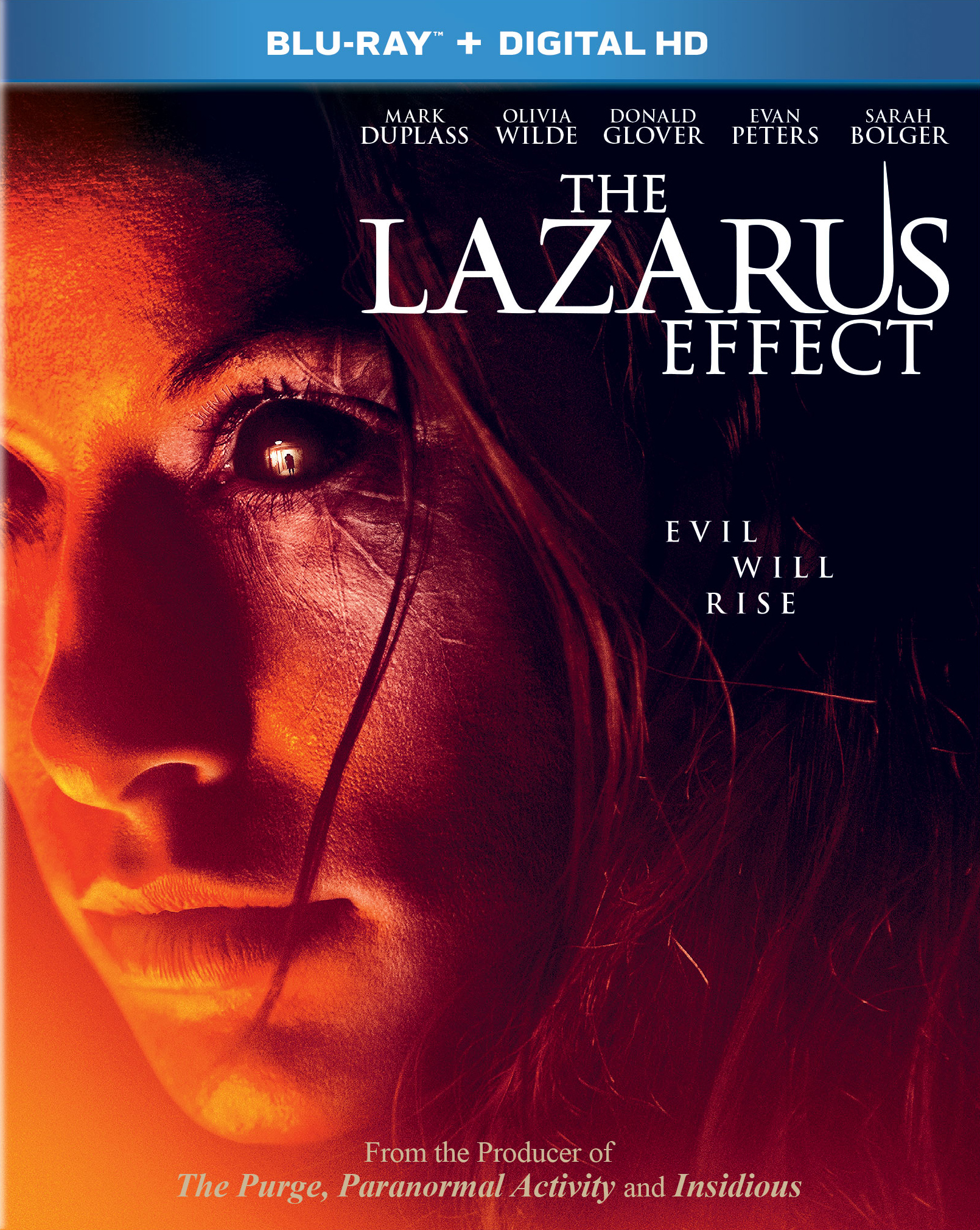 The Lazarus Effect 2015 Hindi Dual Audio 320MB BluRay ESub Download