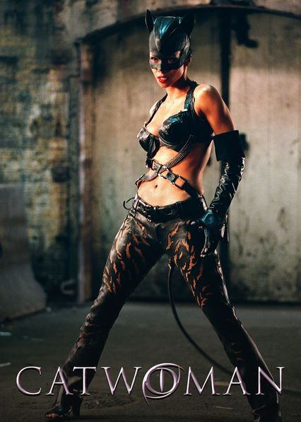 Catwoman 2004 Hindi Dual Audio 720p BluRay 750MB Download