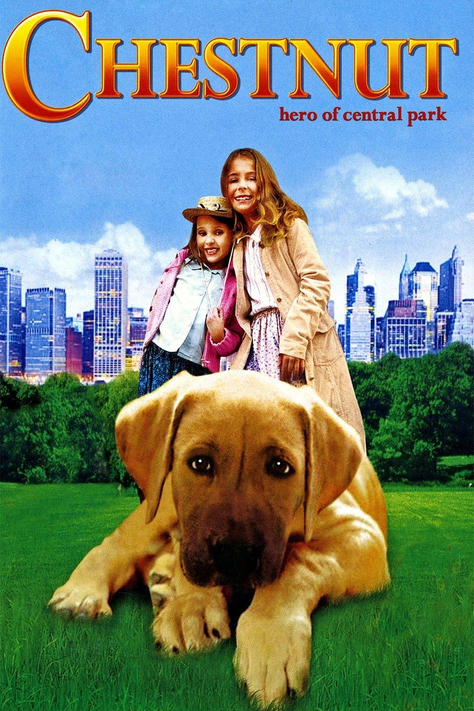 Chestnut Hero of Central Park 2004 Dual Audio Hindi 300MB HDRip ESub Download