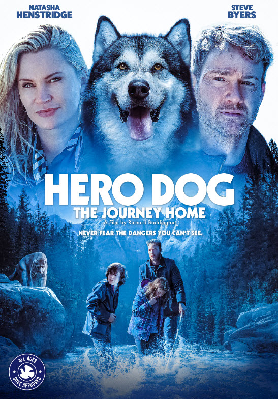 Hero Dog The Journey Home 2021 English 480p | 720p DVDRip 850MB | 280MB Download