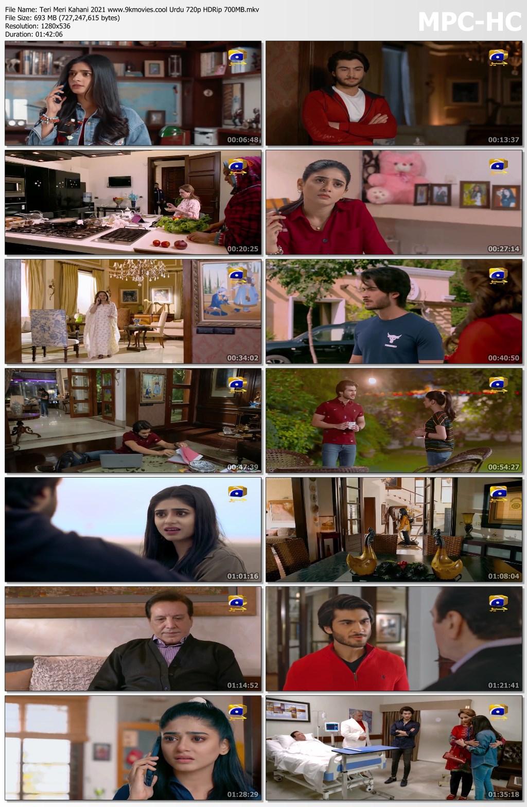 Teri Meri Kahani 2021 Urdu Movie Download HD