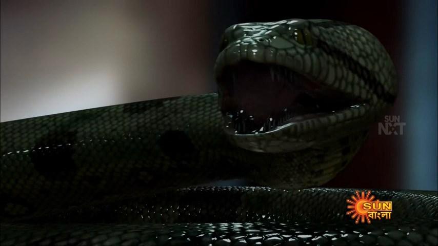 Anaconda 3 (21)
