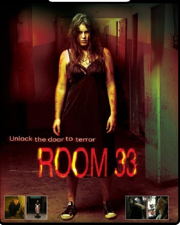Room 33 2009 Hindi Dual Audio 335MB DVDRip Download