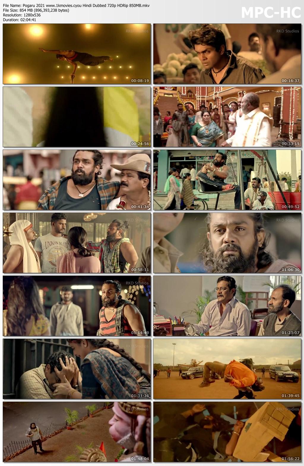 Pogaru 2021 Hindi Dubbed Movie Download Full HD