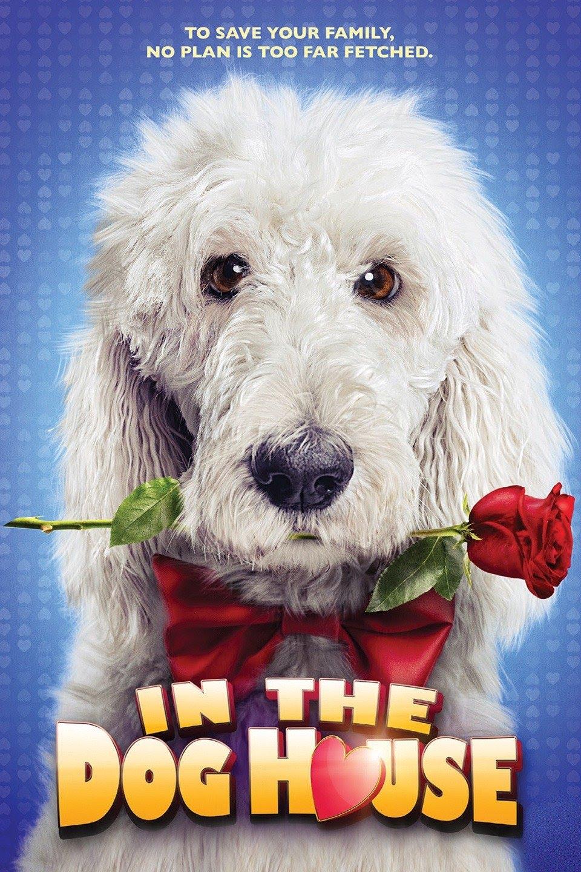 In the Dog House 2014 Dual Audio Hindi 1080p HDRip 1.7GB Download