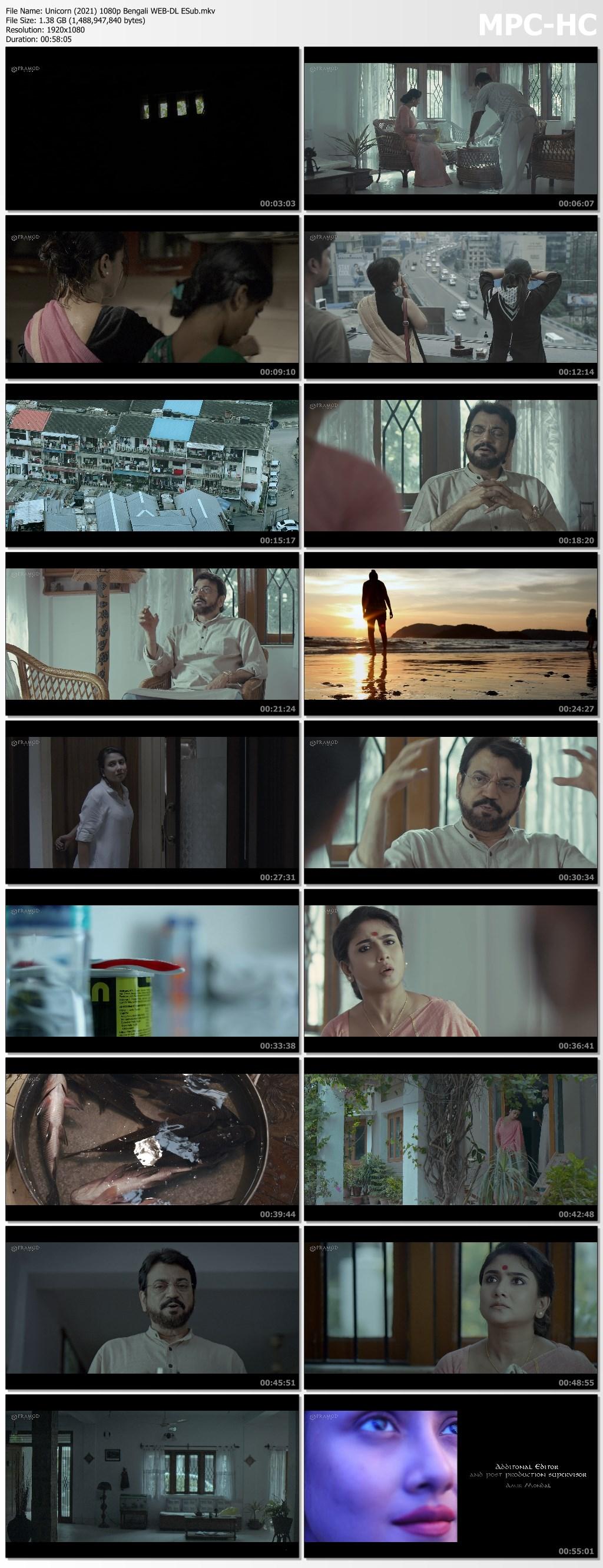 Unicorn (2021) 1080p Bengali WEB DL ESub.mkv thumbs