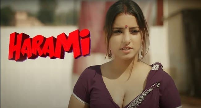 18+ Harami Chapter 1 2021 S01 WOOW Original Hindi Complete Web Series 720p HDRip 400MB Download