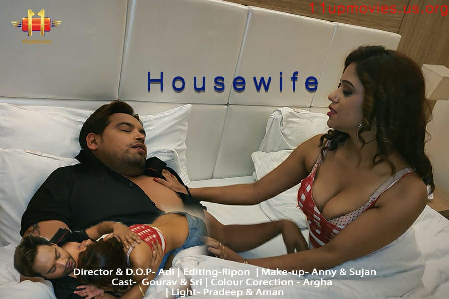 18+ Housewife 2021 11UpMovies Hindi Short Film 720p HDRip 140MB Download