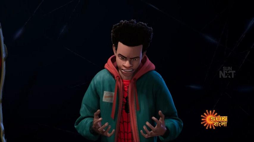 Spider Man Into the Spider Verse (10)