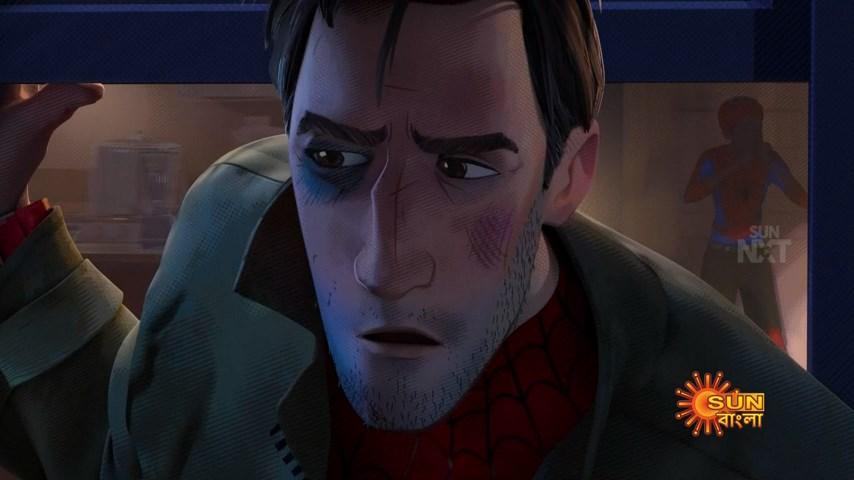 Spider Man Into the Spider Verse (14)