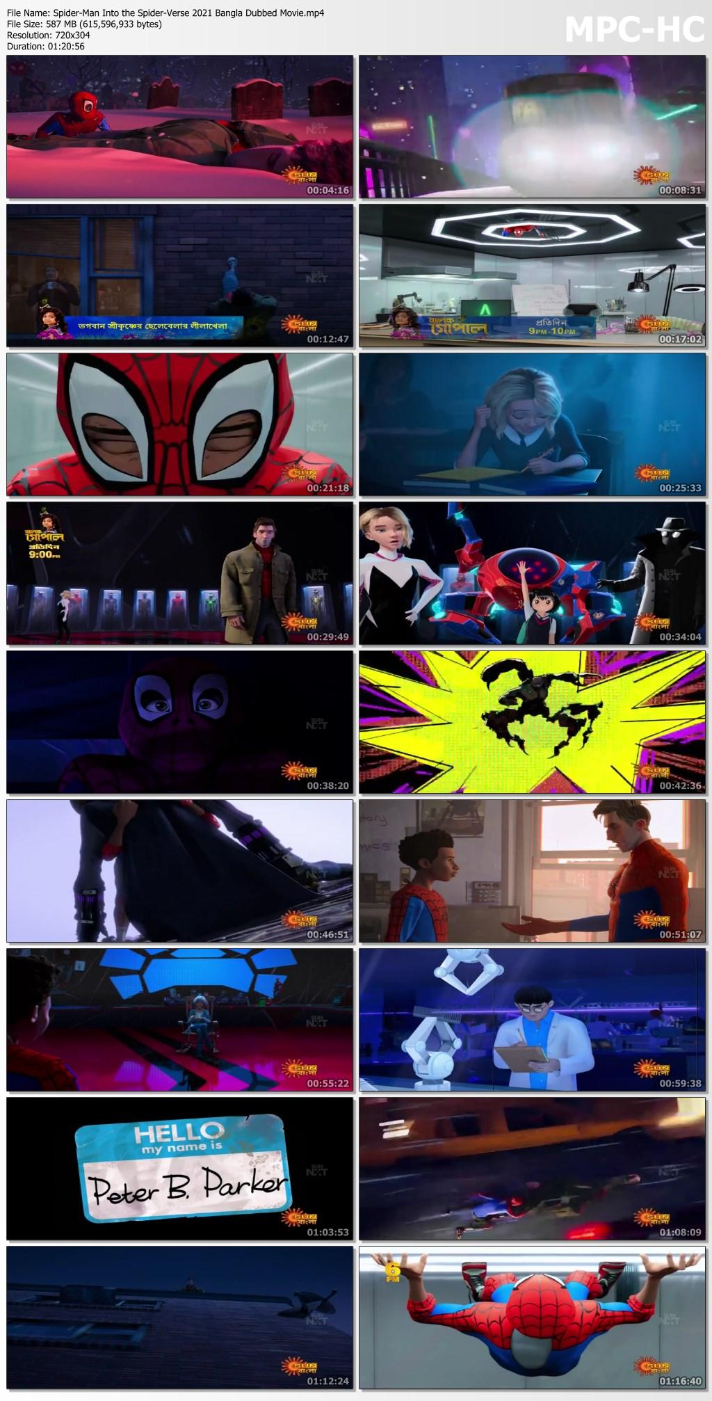 Spider Man Into the Spider Verse (1)