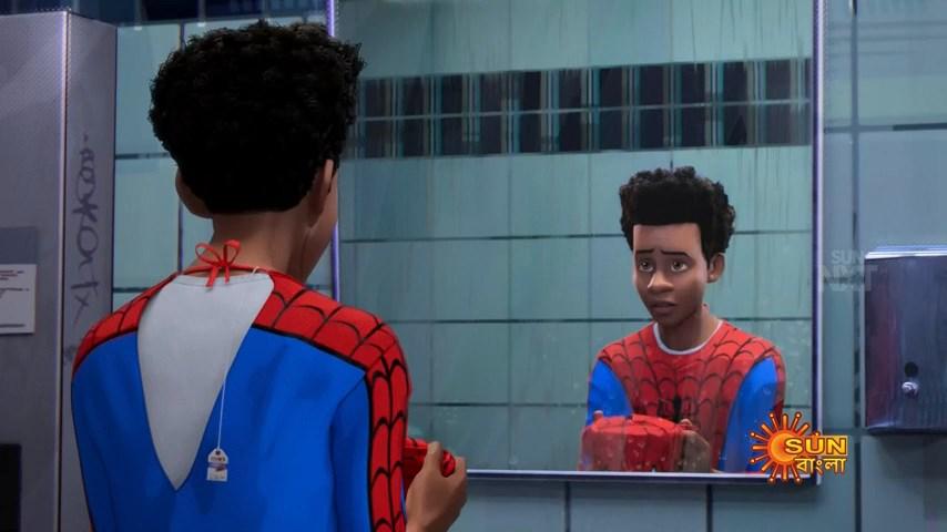 Spider Man Into the Spider Verse (3)