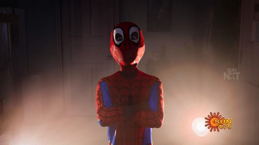Spider Man Into the Spider Verse (4)