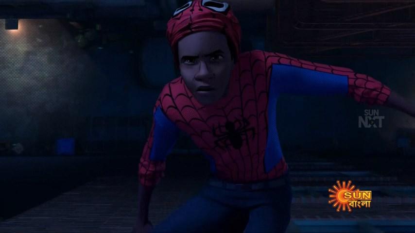 Spider Man Into the Spider Verse (5)