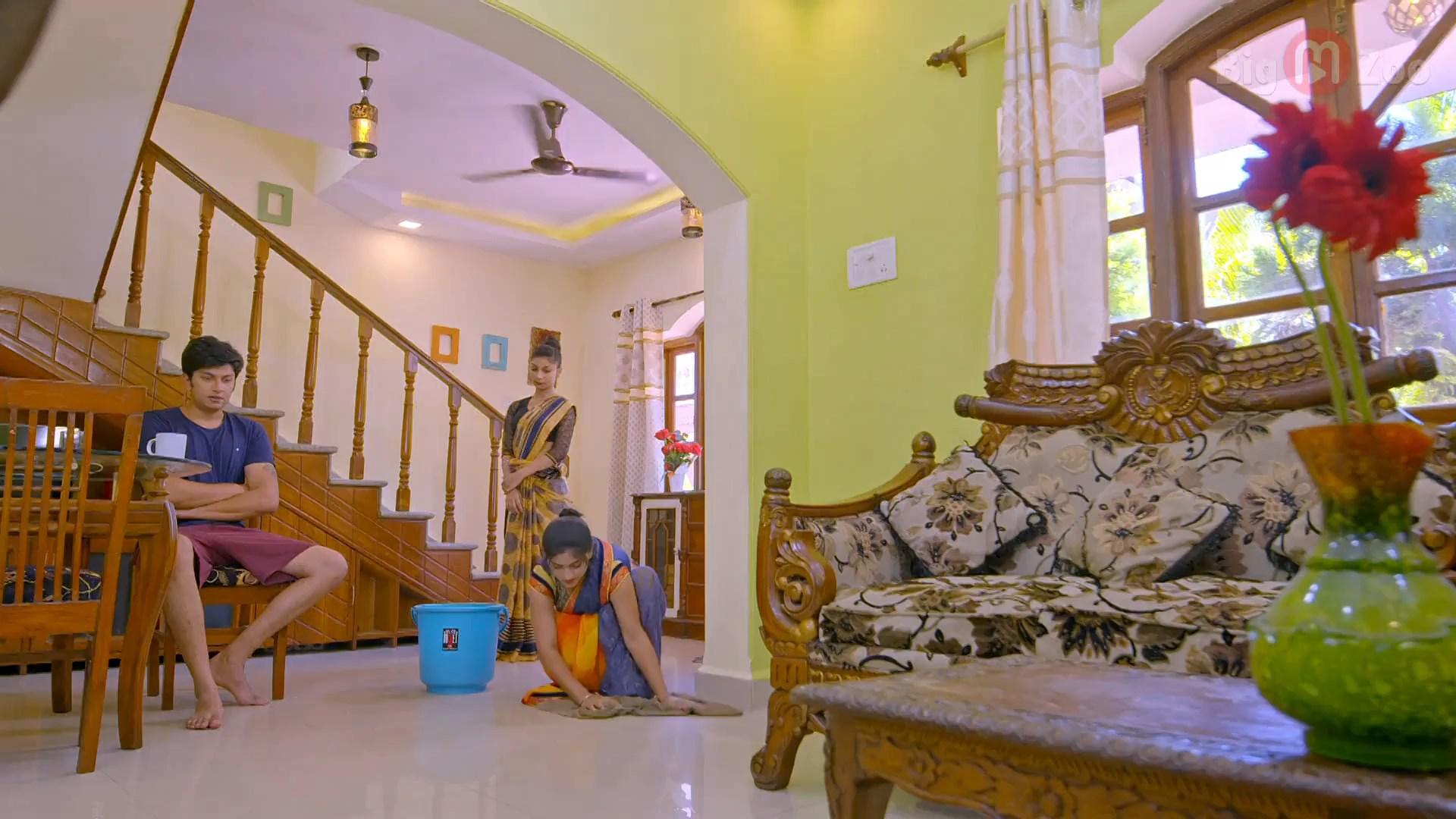 Beautiful House Maid (6)