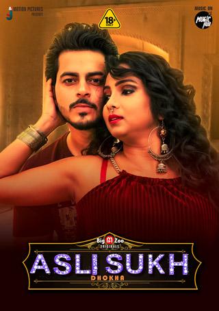 Asli Sukh Dhokha 2021 720p HDRip Season 1 Complete Hindi BigMovieZoo Originals Web Series
