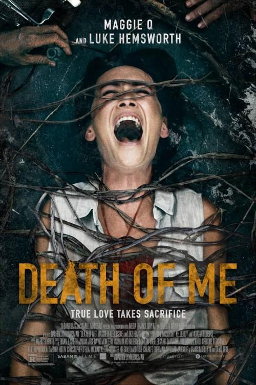 Death of Me 2020 BluRay Dual Audio Hindi & English 480p 720p Esub Full Movie