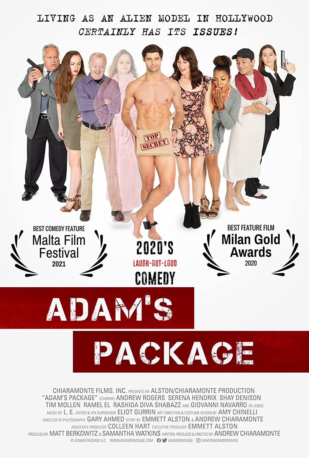 Adams Package 2021 English 480p HDRip 250MB Download