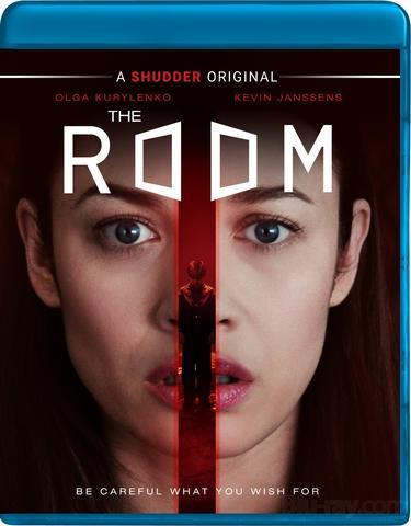 The Room (2019) Hindi ORG Dual Audio BluRay 500MB Download