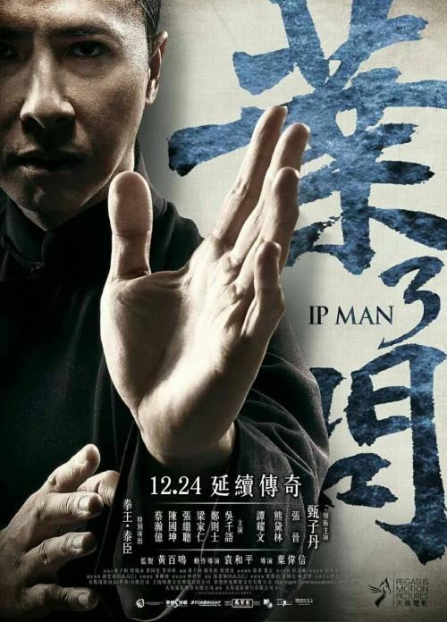Ip Man 3 (2015) Dual Audio Hindi & English BluRay 480p 720p 1080p Full HD Movie