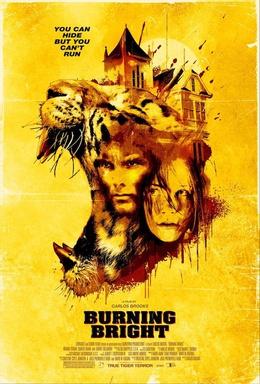 Burning Bright (2010) Hindi ORG Dual Audio BluRay 350MB Download