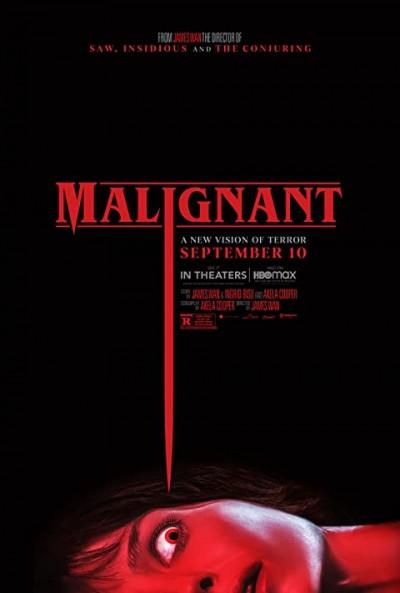 Malignant (2021) ORG Hindi Dual Audio 480p HDRip ESubs 450MB Download