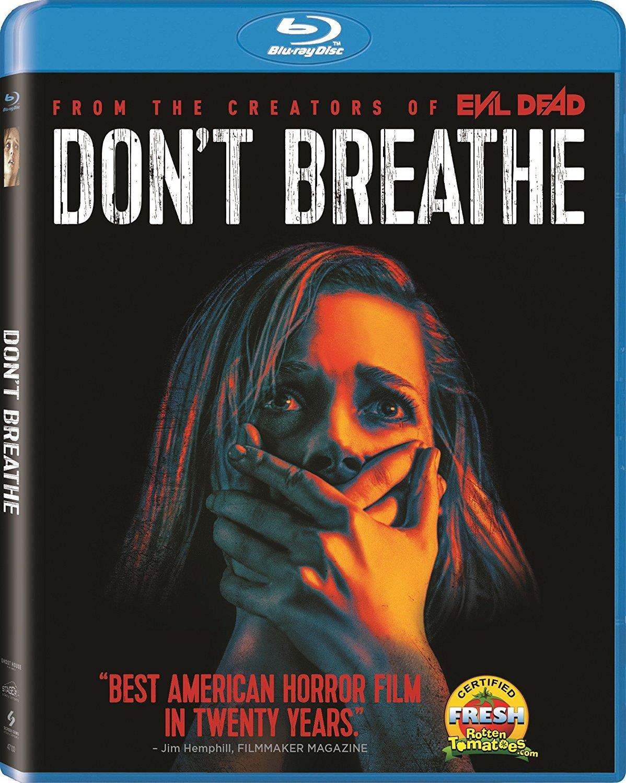 Dont Breathe (2016) Hindi ORG Dual Audio BluRay 300MB Download
